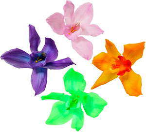 Особые цветы